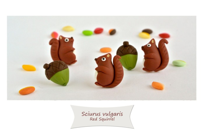 Squirrel and acorn, to celebrate Autumn.