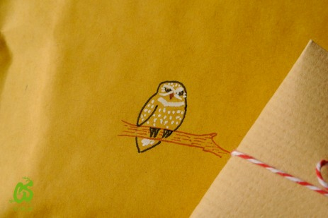 A tiny owl perched on a parcel