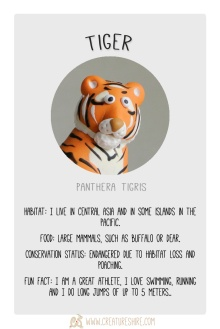 February´s Creature of the Month - Tiger