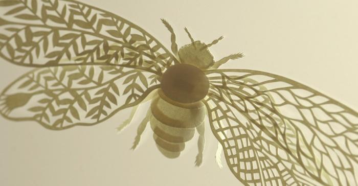 Elsa Mora Yellow bee