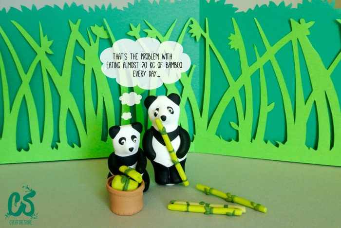 Pandas in the forest