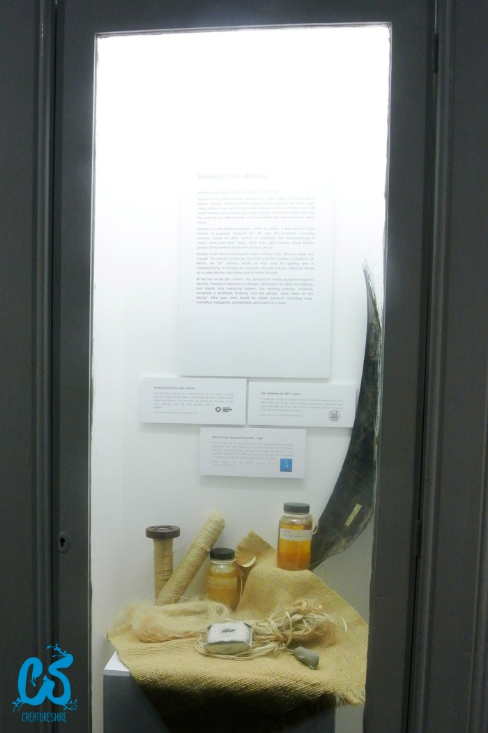 A display showing some of the products of the whaling industry, including oil, whale teeth and soap