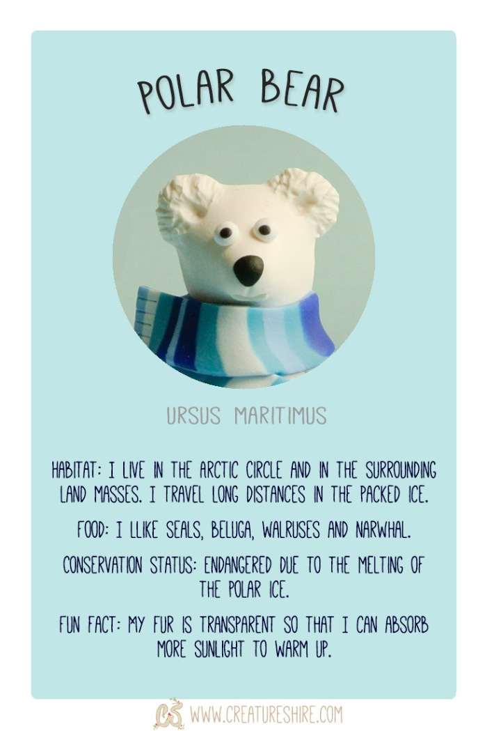 Creature of the month, the polar bear